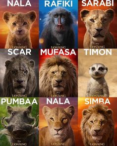 These beautiful The Lion King opens on July 18 in Brazil! Lion King Fan Art, Lion King 2, Lion King Movie, Disney Lion King, Lion Wallpaper, Disney Phone Wallpaper, Cartoon Wallpaper, Simba Lion, Simba And Nala
