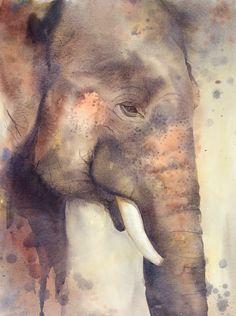 Série Elephant show, issue d'un voyage en Thaïlande. 52x 73 cm hors cadre. Elephant show serie, from a trip in Thailand. 52x 73cm without frame. En lire + ...