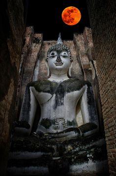 Pra Ajana at Wat Sri Chum, Sukothai, Thailand Laos, Buddha Temple, Orange Wallpaper, Gautama Buddha, Buddhist Art, Beautiful Buildings, Thailand Travel, Southeast Asia, Meditation