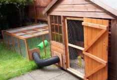 rabbit housing - nora and nell raw Bunny Sheds, Rabbit Shed, Rabbit Hutch Plans, Outdoor Rabbit Hutch, Indoor Rabbit, Rabbit Run, Rabbit Hutches, Pet Rabbit, Rabbit Garden