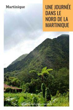 Journée dans le nord de la Martinique : itinéraire dans le nord de l'île. Que faire, que voir ? Route de la trace, jardin de Balata, Anse Couleuvre, Saint-Pierre, la plage du Carbet...