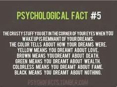 Psychological Fact #5