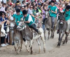 2016 Palio di Romano - Old Districts Festival, April 30-May 1,  in Romano d'Ezzelino, Via Roma and surrounding roads, about 26 miles north of Vicenza; food booth featuring local specialties open at 7 p.m.; music and dancing start at 9 p.m.; May 1,   3:30 p.m. historical parade and flag-throwers show; traditional donkey race and award ceremony.