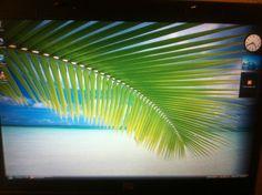 $9.99  HP Compaq 8510w Intel Core 2 Duo 2.2 GHz 1 GB WiFi T7500 Microsoft windows Vista Business 120 GBs hard drive