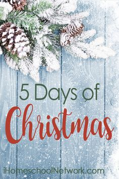 5 Days of Christmas brought to you by iHSNET