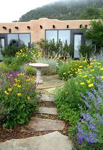 southwest garden
