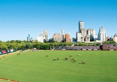 Currently, the highest level of polo is played in Argentina, the United States of America, and England. However, Polo is played in more than 60 countries. Sport Of Kings, Days Of The Year, Fields, Golf Courses, Dolores Park, England, United States, Polo, Tours