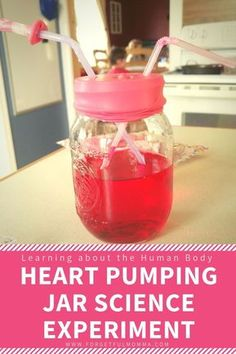 Heart Pumping Human Body Science Experiment #scienceforkids #scienceexperiments #learninganatomy #homeschooling The Human Body, Human Body Science, Human Body Activities, Human Body Unit, Human Body Systems, Human Body Lesson, Body Preschool, Preschool Science, Science Activities