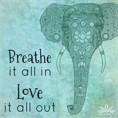 Beautiful Elephant Quotes. QuotesGram                                                                                                                                                                                 More
