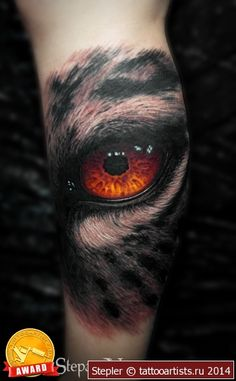~Owl Eye~
