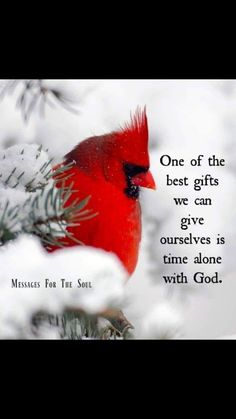 Super Quotes About Strength Encouragement Mom 63 Ideas Quotes About Strength, Faith Quotes, Mom Quotes, Cardinal Birds Meaning, Bird Meaning, Bird Quotes, Wall Quotes, Jesus Is Lord, Super Quotes