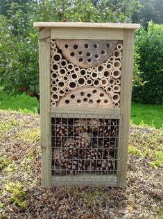 Bug box bee house insect hotel mini beast habitat & shelter This would be fun to build with Zack Garden Bugs, Garden Insects, Garden Pests, Garden Art, Bug Hotel, House Insects, Hotels For Kids, Mason Bees, Bee House