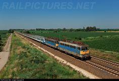 Net Photo: 431 279 Hungarian State Railways (MÁV) at Tárnok, Hungary by Bíró Tamás Locs, Hungary, Trains, Photograph, Change, Landscape, Photography, Scenery, Photographs