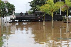 Trem da Ferrovia Madeira Mamoré durante a grande cheia do Rio Madeira em fevereiro de 2014. Porto Velho, Rondônia, Brasil