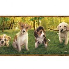 Faixa Border Decoração Cachorrinhos, Filhotes, Outlet Origini 631-1, importado, rolos de 5m x 16,7cm