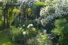Le jardin de Greignac