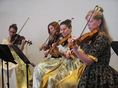 Bona Nota Valdštejnsky sál Jičíng Violin, Music Instruments, Musical Instruments