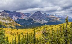 ***Valley of larches (Banff, Alberta) by Catalin Mitrache on 500px
