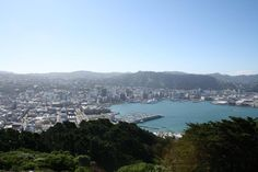 Windy Wellington, the place where I got my first tattoo.