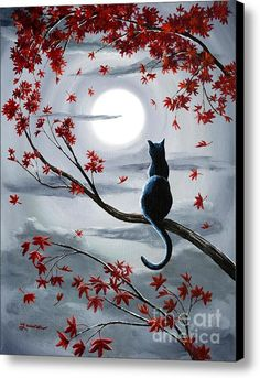 Cat Painting - Black Cat In Silvery Moonlight by Laura Iverson Cat Drawing, Painting & Drawing, Black Cat Painting, Autumn Painting, Painting Canvas, Rock Painting, Image Chat, Crazy Cats, Painting Inspiration