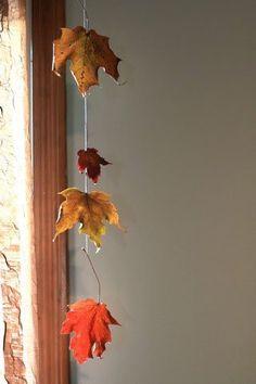 102510-leaves2.jpg