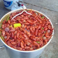 Boiled Crawfish, one of my favorite things about summer!