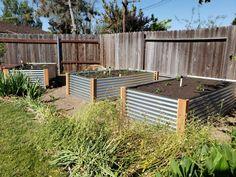 How To Build a Raised Metal Garden Bed The Final DIY Corrugated Metal Raised Beds below Metal Raised Garden Beds, Building A Raised Garden, Raised Beds, Garden Types, Diy Garden Bed, Garden Ideas, Grow Organic, Corrugated Metal, Garden Planters