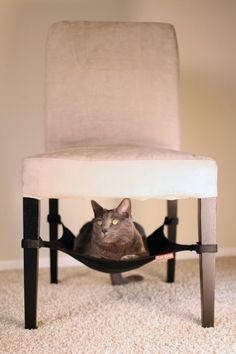 h ngematte selber machen things i love pinterest katzenkorb fressnapf und selber machen. Black Bedroom Furniture Sets. Home Design Ideas