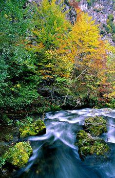 Landscape / Nature, El río Saliencia,P. Nt. de Somiedo, Asturias Spain