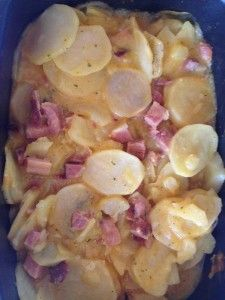 Gourmet Mixems Cheddar Ranch Dip Mix Au gratin Potatoes and Ham by Valerie Boerner