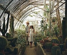 Bohemian Homes: Conservatory