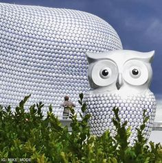 Big Hoot Birmingham Owl. On the 15th October 2015 this owl raised 11,000 pounds at auction for the Children's Hospital.