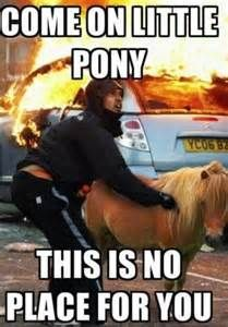 Come On Little Pony This is No Place for You - http://www.memefunnies.com/come-on-little-pony-this-is-no-place-for-you/