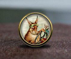 Steampunk Rabbit / Vintage Bronze Dresser knobs by GibbsHouse