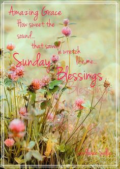 Have a blessed Sunday! ❤️