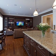 Open Concept Living Room Kitchen Design, Pictures, Remodel, Decor and Ideas - page 7