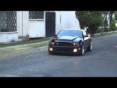 BMC Ford Mustang Black Mamba Hood 2010-current models
