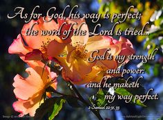 His Way is Perfect  31 As for God, his way is perfect; the word of the LORD is tried: he is a buckler to all them that trust in him. 32 For who is God, save the LORD? and who is a rock, save our God?  33 God is my strength and power: and he maketh my way perfect. --2 Samuel 22:31-33 KJV