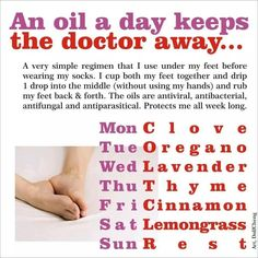 An essential oil per day keeps the doctor away (using Clove, Oregano, Lavender, Thyme, Cinnamon, and Lemongrass essential oils)