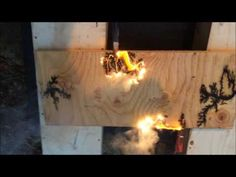 Lichtenberg Machine Wood Fractal in action by Andrea Lawrence Nov 27 16