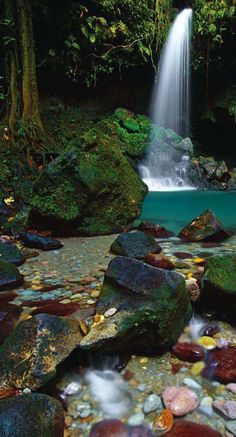 Dominica waterfall - Caribbean - #junkydotcom http://junkystravels.weebly.com
