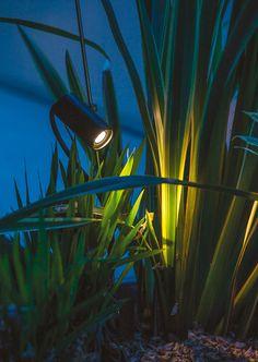 David Groppi GRILLO - Outdoor floor LED lamp with adjustable spotlight - Outdoor Floor Lamps, Outdoor Garden Lighting, Plant Lighting, Outdoor Light Fixtures, Outdoor Flooring, Tree Lighting, Landscape Lighting, Lamp Design, Lighting Design