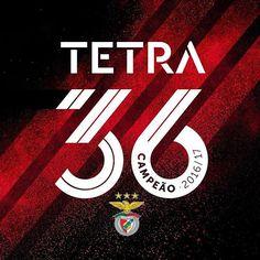 """57.8 m Gostos, 727 Comentários - Sport Lisboa e Benfica Oficial (@slbenfica) no Instagram: """" #Tetra36"""""""