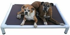 Denny Monster - Near indestructible Chew Resistant Dog Bed for Large Breeds