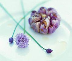 Fleurs d'Ail rose de Lautrec