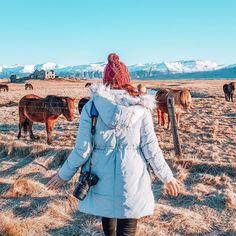 Instagram Travel, Iceland, Raincoat, Ice Land, Rain Jacket