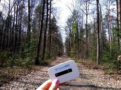 Everywhere you want, even in the woods!