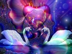 Many people confuse a soul connection with a soulmate relationship. Each have similar qualities because they are karmic but there are also some differences. Soulmate Connection, Soul Connection, Witchcraft Herbs, Mystic Moon, Witchcraft Supplies, Twin Souls, Psychic Abilities, Psychic Readings, Oracle Cards