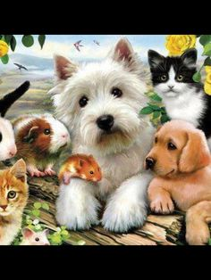 Of all God's creatures big and small the Lord God made them all!