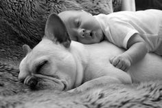 Best pillow in the world.